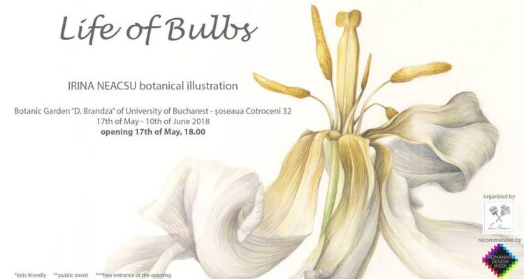 IRINA NEACSU: LIFE OF BULBS- 17 MAY – 10 JUNE 2018  BOTANIC GARDENS BUCHAREST