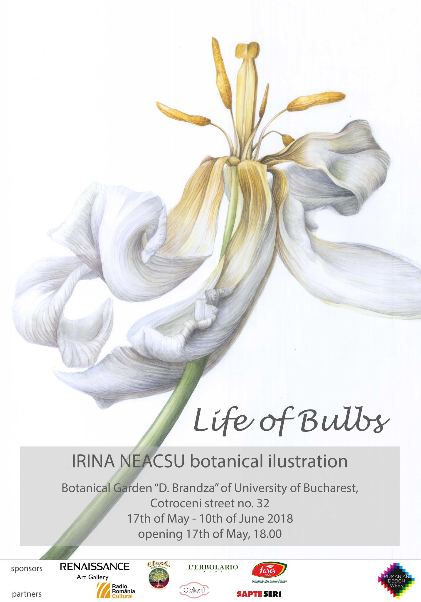 Life Of Bulbs